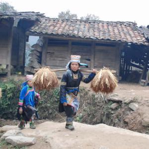 貴州省苗族の「吃鼓蔵」は、13年に一度行われる祭り