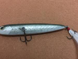 ハンドメイドルアーに本物の鱗を貼る方法!①魚の鱗を手に入れる。