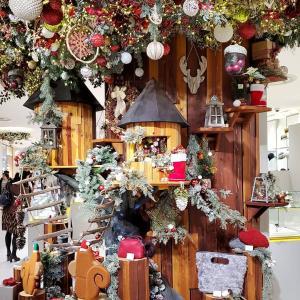 クリスマスが 始まるよ!