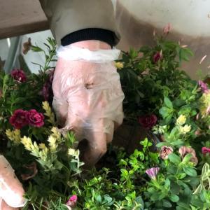 ティフォシーアンティークの寄せ植えリース