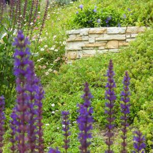 花咲く階段花壇〜癒しがテーマです〜