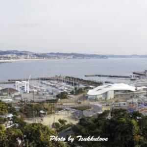 年末恒例♪江の島ビール 2020