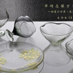 6月5日-13日 3度目の早崎志保ガラス展開催いたします