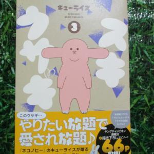 ☆キューライス・スキウサギ☆