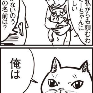 転生したら猫のミーちゃんだった(5)