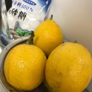 農薬なしのレモン。