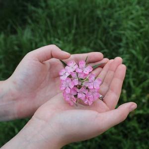 8/30(金)新月★土岐市で【レイキ練習会】をします