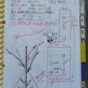 勉強家(;゚ロ゚)