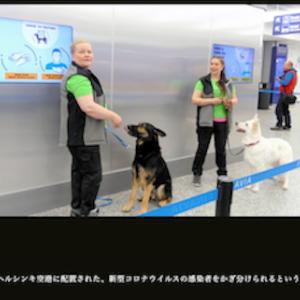 9月24日 コロナ陽性か犬が判断
