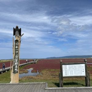シルバーウィーク晴天の網走天空の里から能取湖サンゴ草へ