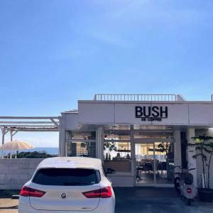 絶景カフェ『BUSH DE COFFEE』