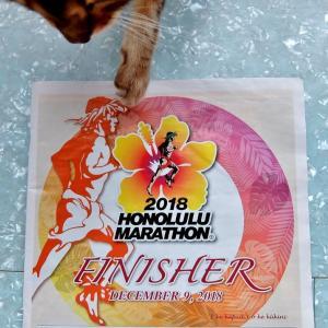 ホノルルマラソン 14回目