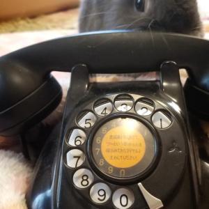 『まるとくうのおうち』に黒電話