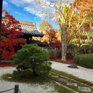 秋の京都散策、南禅寺へ