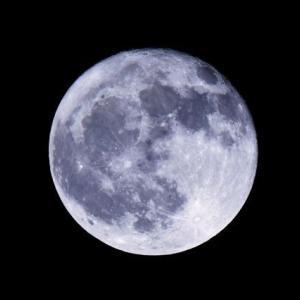 今夜は今年最後の満月