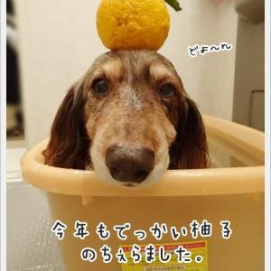 暖かお風呂
