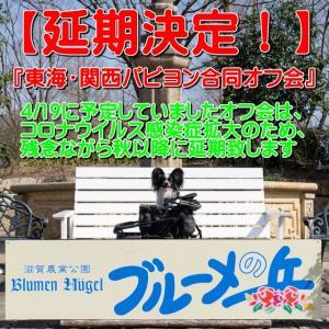 4/19の『東海・関西パピヨン合同オフ会』は延期
