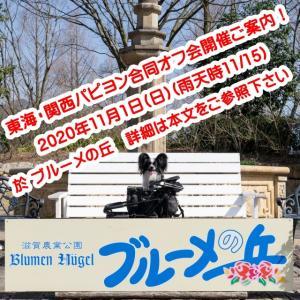 東海・関西パピヨン合同オフ会開催ご案内!(11/1(日) 於 ブルーメの丘)
