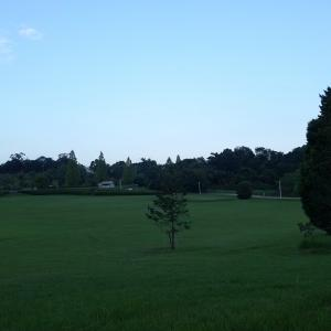 トンボ池公園~早朝