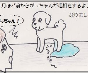 がっちゃんのトイレ事情