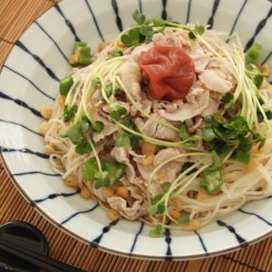 お昼ご飯 No.9 梅冷しゃぶ素麺