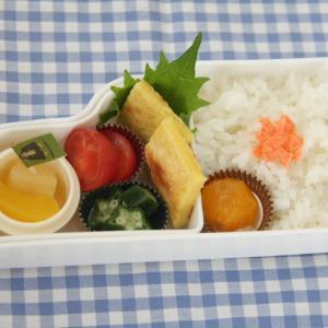 お弁当 No.844 チーズ入りチヂミ&蒸し鮭弁当