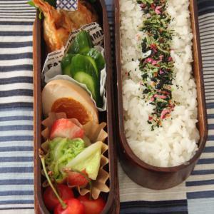 お弁当 No.848 揚げ餃子&煮卵弁当