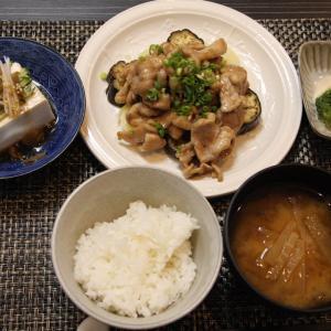 お夕飯 No.145  豚肉の照りだれ&搾菜豆腐