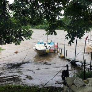 7月 29日 雄物川今期2度目の増水