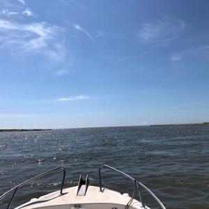 8月 1日 オイル交換からのボートキス