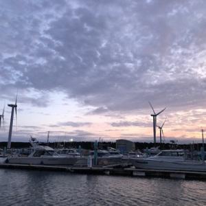 11月18日 マダコ釣行 秋田港