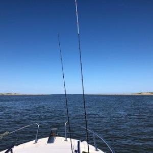 7月 7日  真鯛釣行3 2019