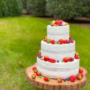 ベリーの3段ネイキッドケーキ ブログ特典