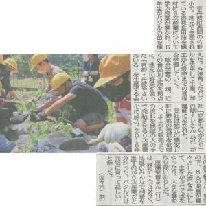 町竹野小6年生 地元生産の食用油 バジル植え 販売まで学習─京都新聞 丹波版より
