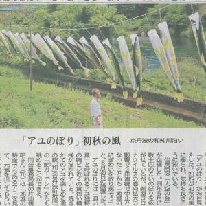 町の和知川沿い アユのぼり 初秋の風─京都新聞 丹波版より