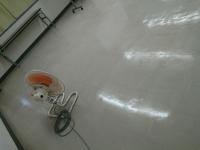 半年振りの会議室の定期清掃