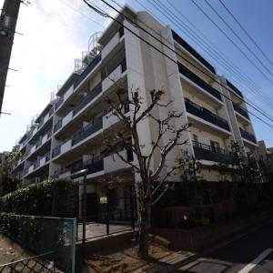 【販売物件】エコヴィレッジ田無 114号室 西武新宿線 田無駅 徒歩10分