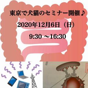 東京で犬猫のセミナー開催のお知らせ♪