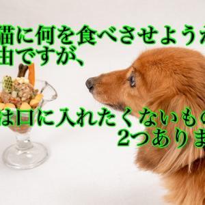 犬猫に何を食べさせようが自由ですが、私は口に入れたくないものが2つあります