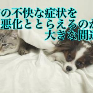 犬猫の不快な症状を悪化ととらえるのが大きな間違い