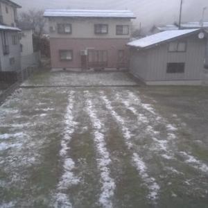 来ました!初雪!