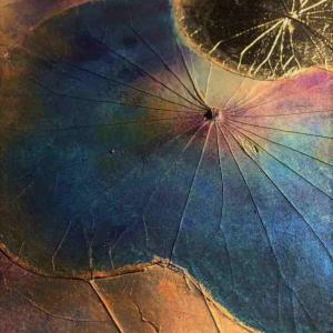 ★今週の色1/13~「紫」「ミステリアス」