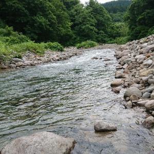 ヤマメの渓に…。