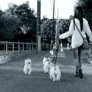 近くの公園で・・・☆彡