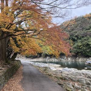 本日の鉄分(嵐山、Kato京都駅店、向日町)(12/8)