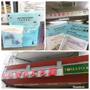 もんぜんぷら座・市民協働サポートセンター(長野市)であがり症のメンバー&ボランティア募集❗️