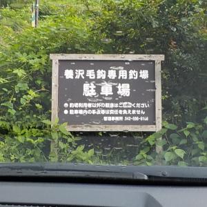 養沢(今年24回目)に行ってきました
