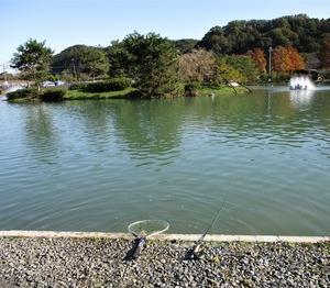 秋川湖オープン前の楽しみ!?
