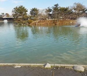 秋川湖(今年7回目)に行ってきました