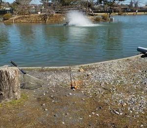 秋川湖(今年20回目)に行ってきました